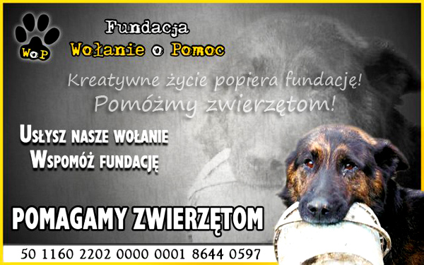 Fundacja pomagamy zwierzętom