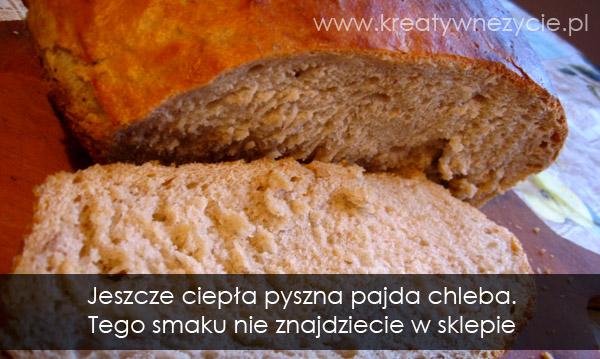 pajda chleba