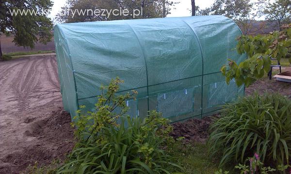 tunel na pomidory