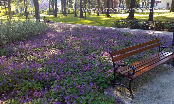 Park Szczawnica