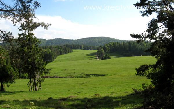 Szlaki piesze Żegiestow