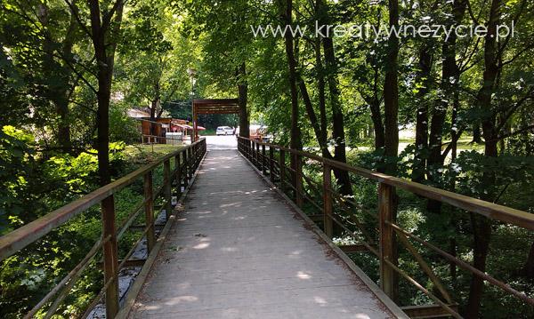 Szlak rowerowy nad Dunajcem