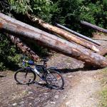 Szlak rowerowy Szczawnica – Sewerynówka – Dolina Sopotnickiego Potoku – okolice schroniska na Prehybie – Szlachtowa – Jaworki – Szczawnica