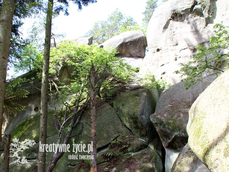 Prządki - skały koło Krosna