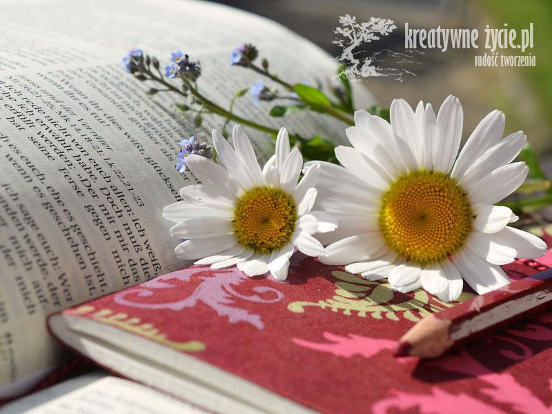 Lato czytanie książek