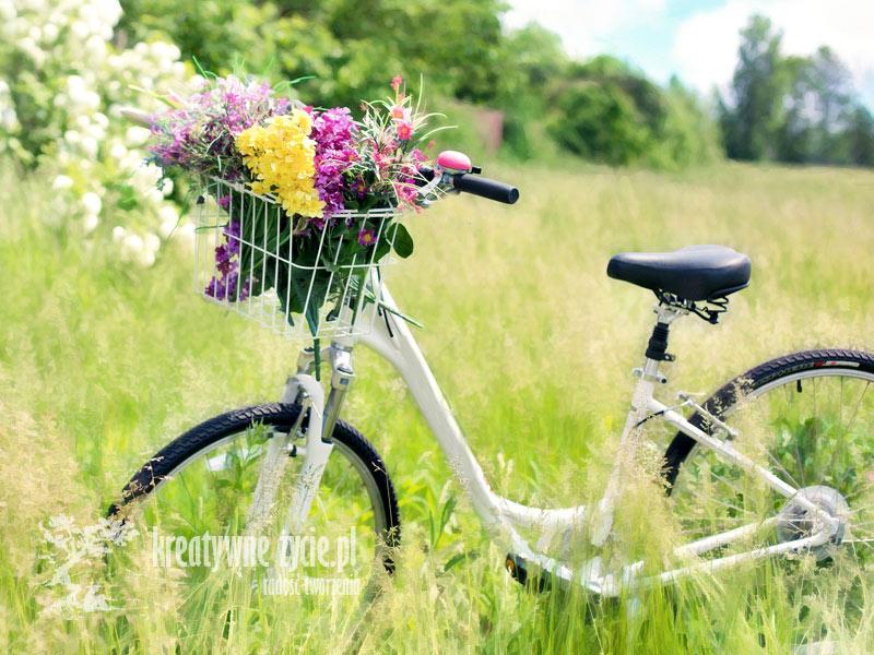 Lato rower