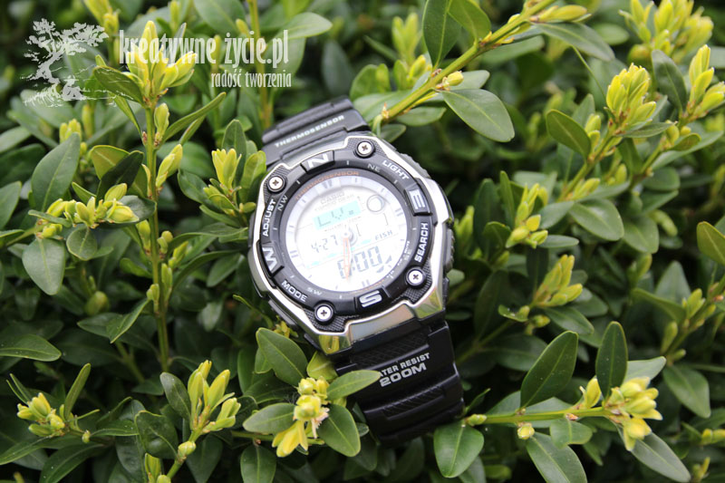 Casio Fishing Gear recenzja
