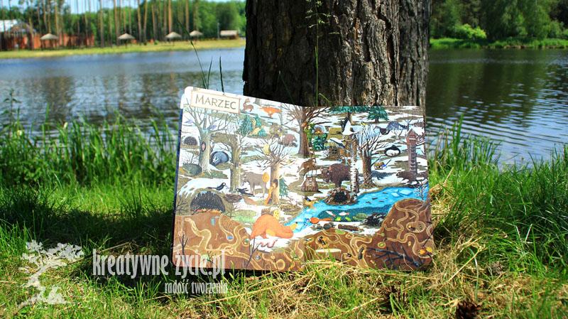 Rok w lesie - recenzja