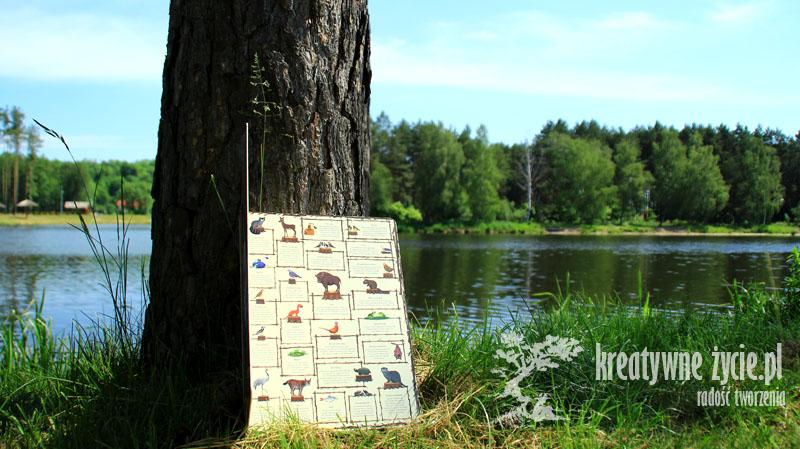 Rok w lesie fotorecenzja