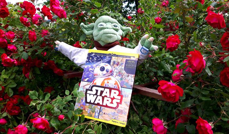 Star Wars. Popatrz i znajdź