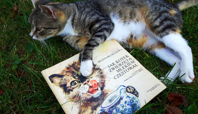 Jak kotek zwierzęta mlekiem częstował recenzja