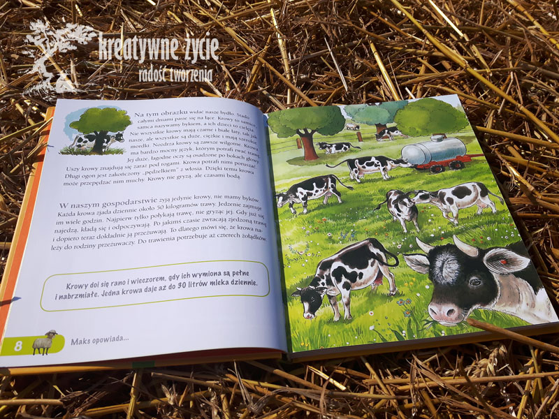 Anne Suess Gospodarstwa wiejskie
