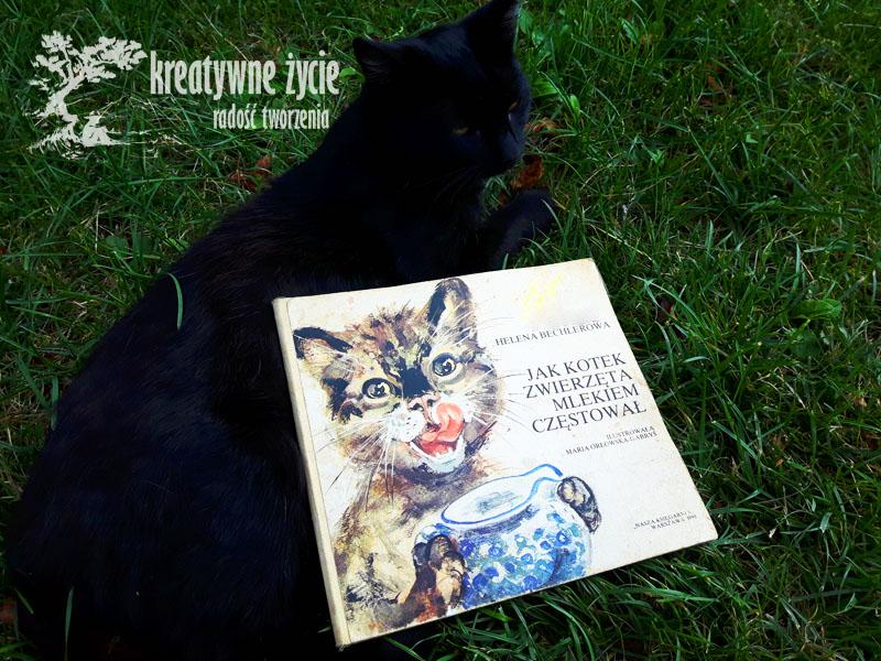 Bajka o kotku i zwierzetach
