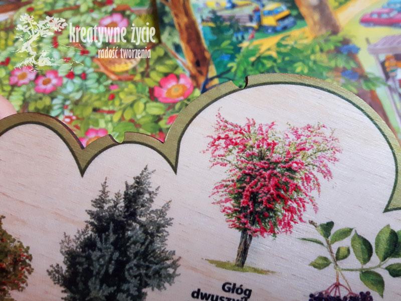 Nauka krzewów zabawka ekologiczna