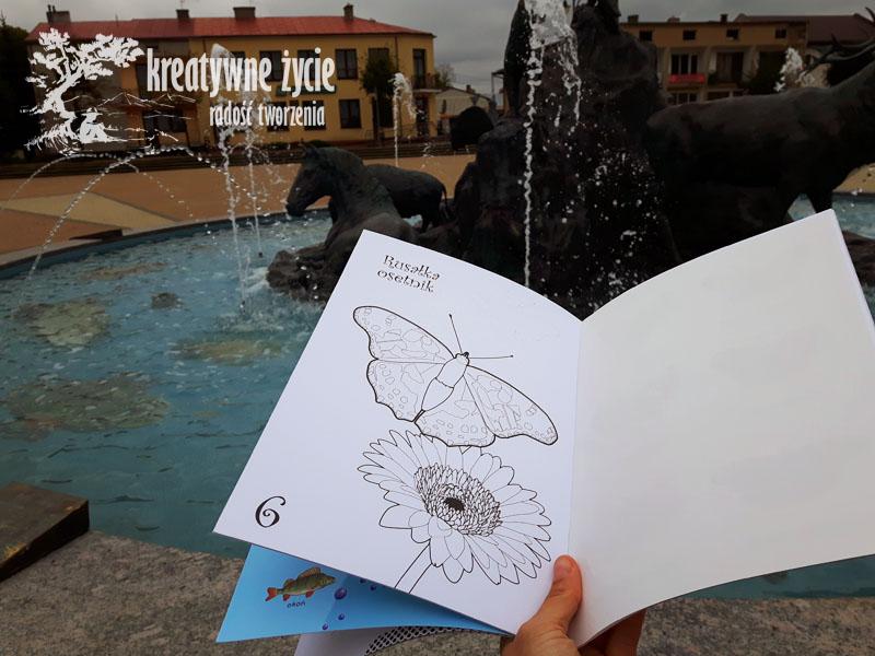Kolorowanka Motyle Puls Art