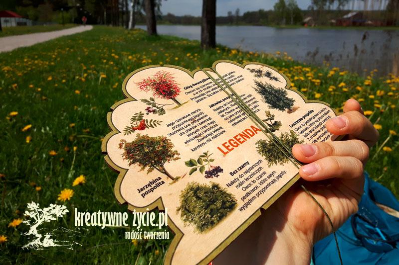 Leśne ksztatły Puls Art - krzewy