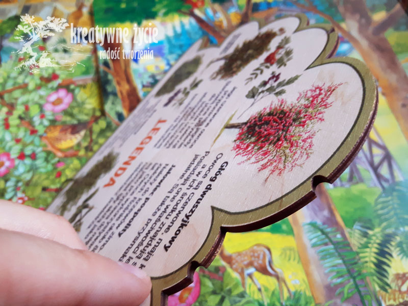 Puls Art leśne kształty wiedzy