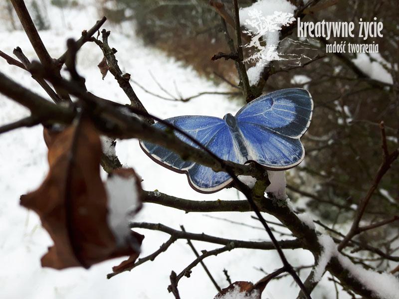 Magnesy zwierzęta leśne od Puls Art motylek