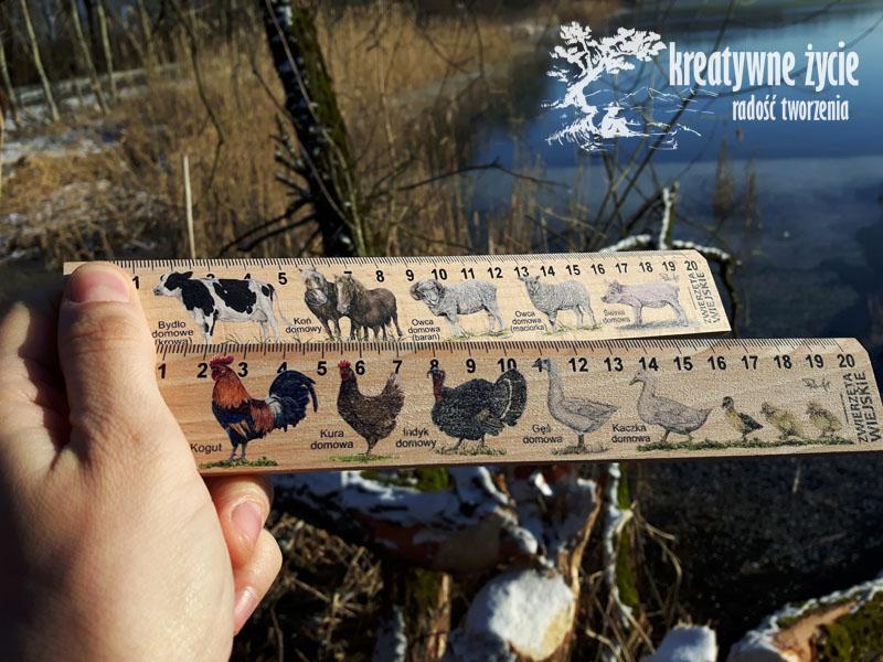 Linijki zwierzęta wiejskie Puls Art