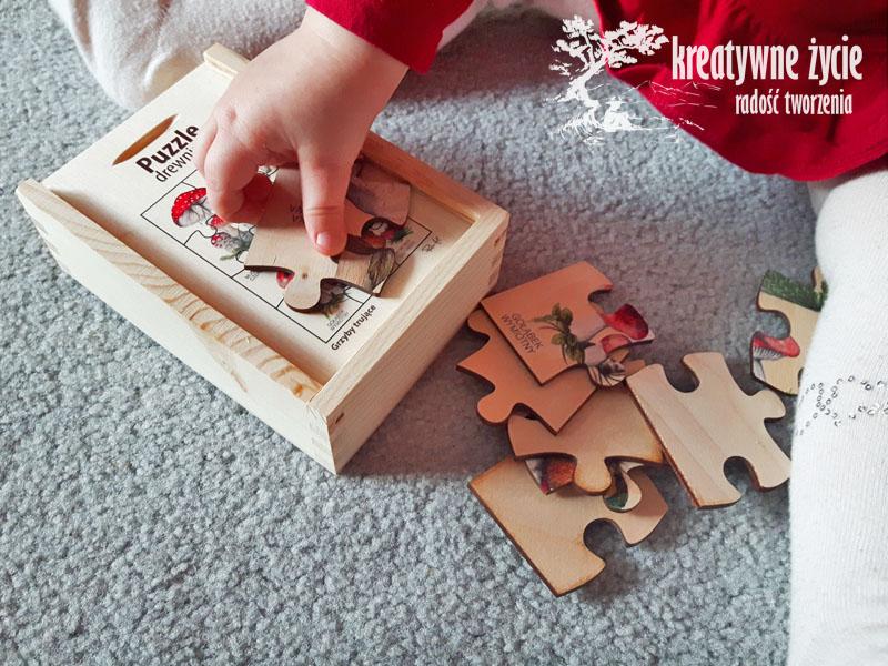 puzzle-pulsart5