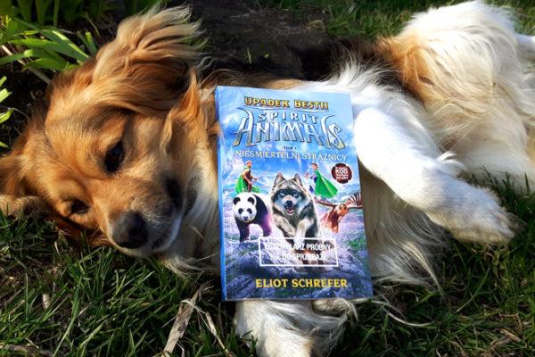 Spirit Animals Upadek bestii recenzja