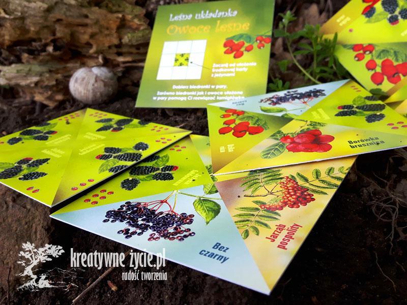 Układanka owoce leśne