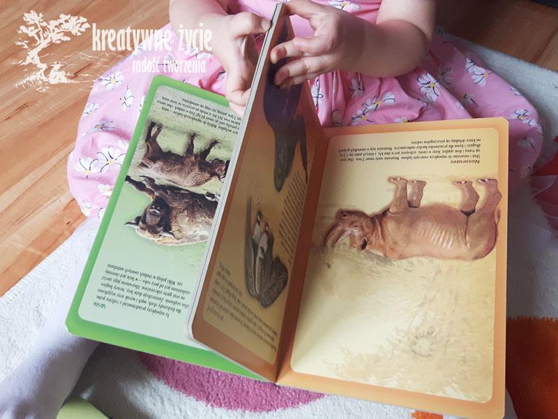 Atlas zwierząt dla dzieci twarde strony