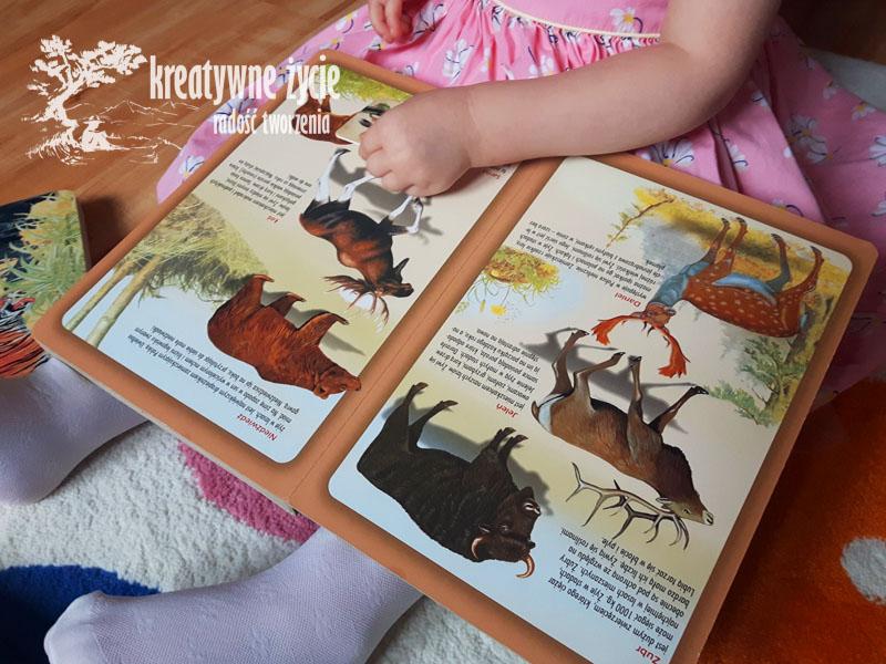 Atlas zwierząt dla dzieci Zielona Sowa
