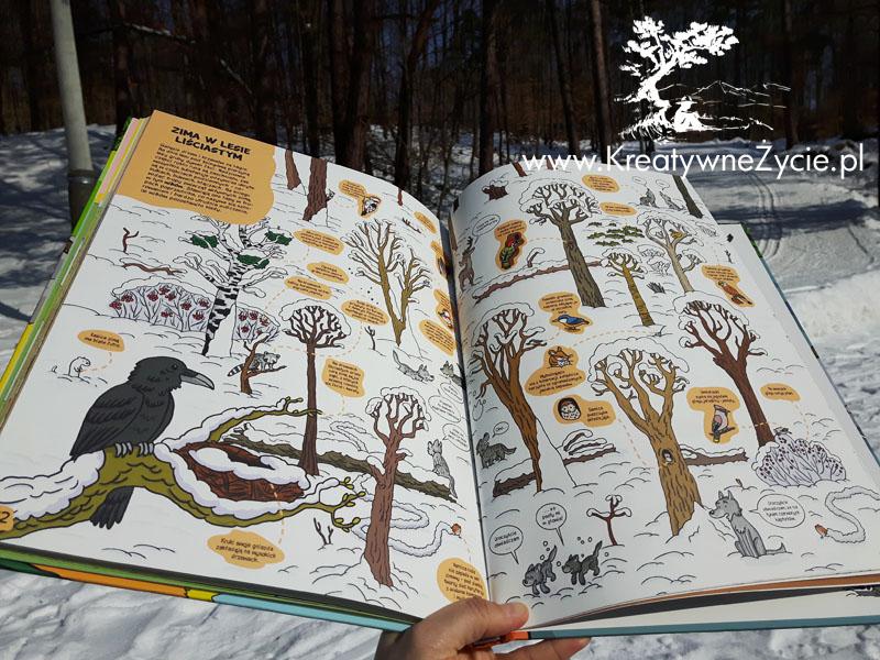Zima w lesie liściastym