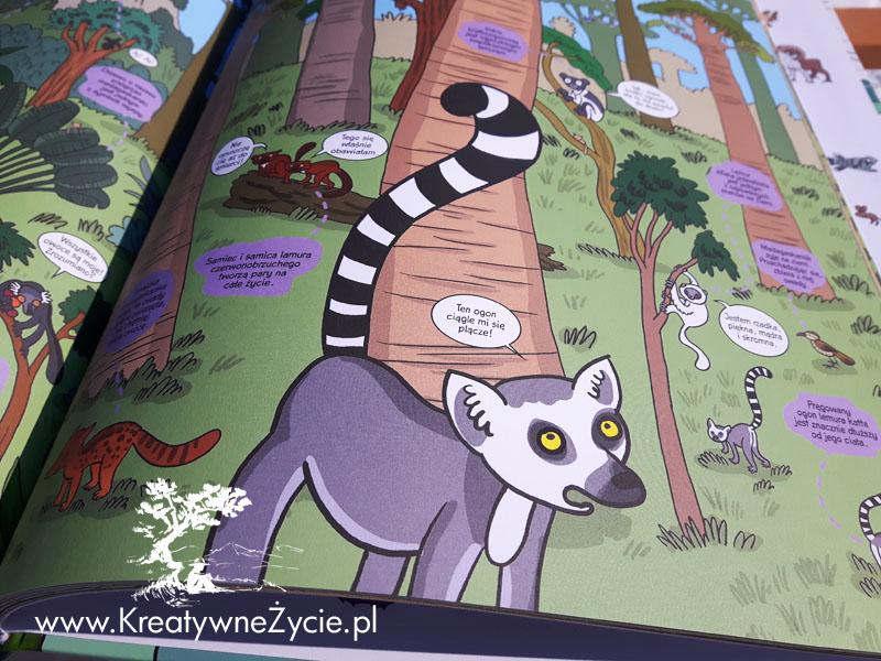 Lemur Samojlik
