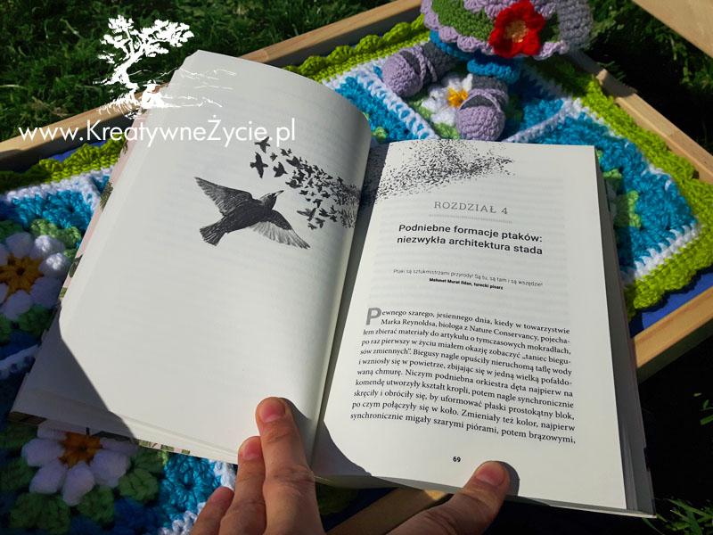 Świat ptaków - książka w środku