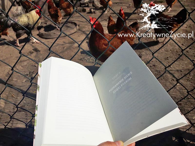 Świat ptaków Robbins