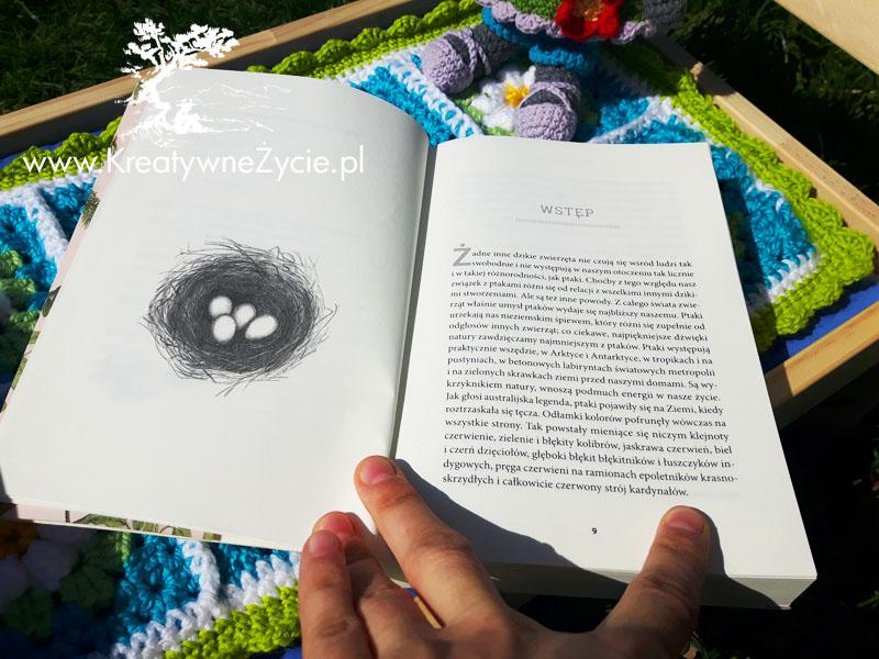 Świat ptaków książka