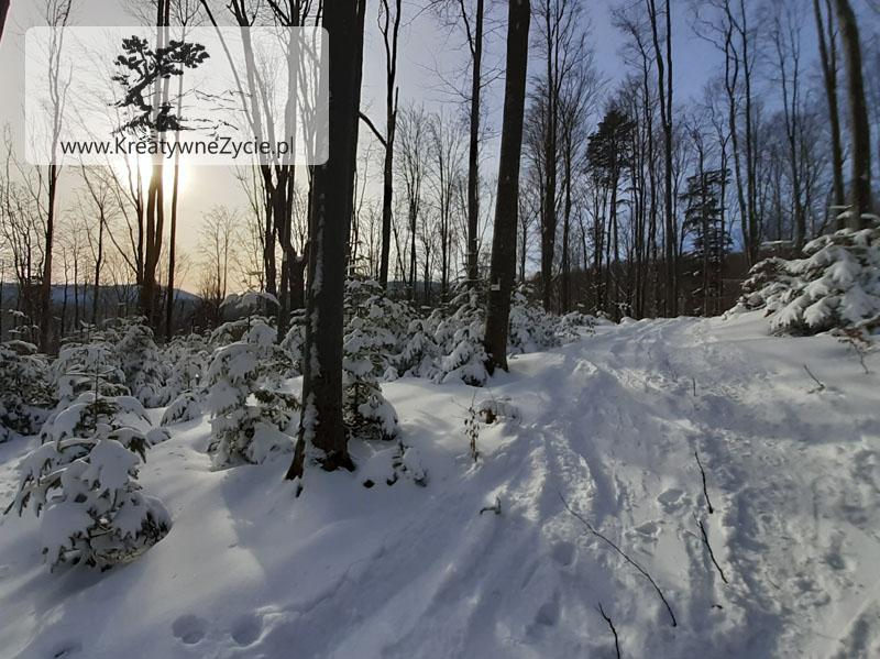 Zima szlak na Bukowe Berdo