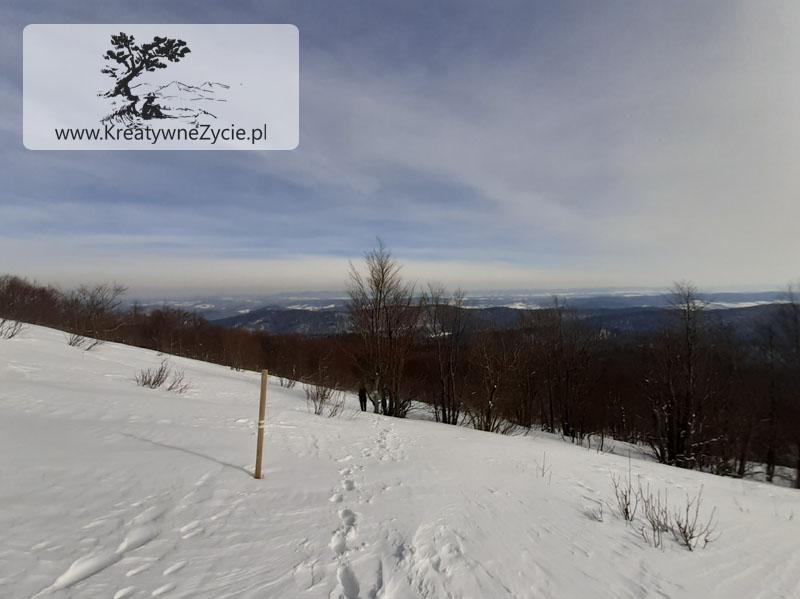Bukowe berdo - zimowy szlak
